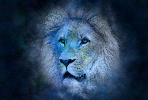 Löwe-Selbstbewusst