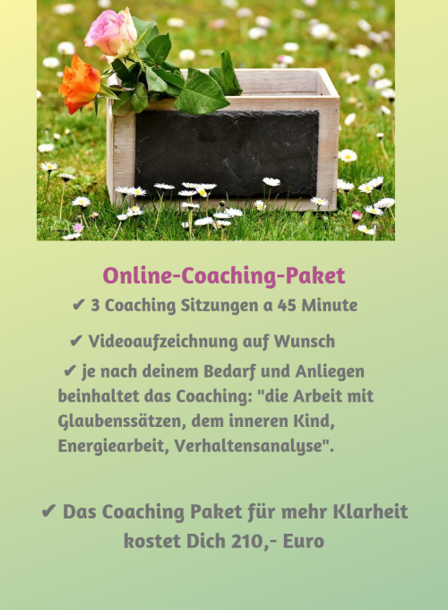 Online-Coaching-Paket 3 Sitzungen